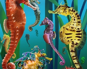 Maui, Hawaii - Seahorses (Art Prints available in multiple sizes)