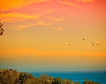 Sunset and Birds (Art Prints available in multiple sizes)