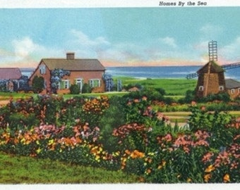 Cape Cod, Massachusetts - View of Homes by the Sea (Art Prints available in multiple sizes)