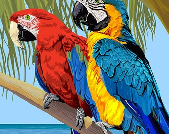 Florida Keys, Florida - Parrots (Art Prints available in multiple sizes)