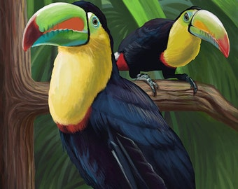 Tucan - Visit the Zoo (Art Prints available in multiple sizes)