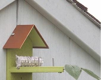Hummingbird Nest Builder