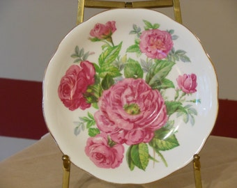 Vintage Roslyn Fine Bone China English Plate