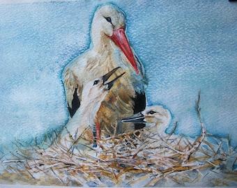 The birds (The Stork