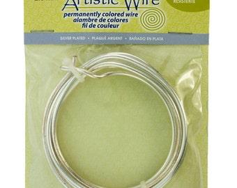 Artistic Wire Coil Bag SP Silver 10ga 5 feet (WR26010)