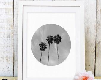 30% OFF SALE Art Print, Palm Tree Print, Palm Tree Art, Palm Print, Palm Trees, Photography Print, Circle Print, Palm Tree, Palm Photography