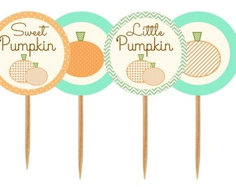 Sweet Pumpkin Little Pumpkin Baby Shower Birthday Cupcake toppers, tags, labels, stickers, cupcake picks-INSTANT DOWNLOAD pdf