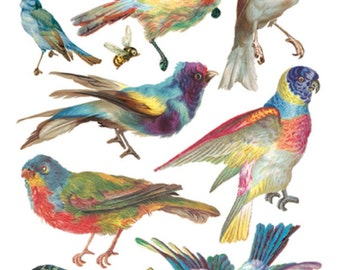 Stickers-TRIPICAL BIRDS-Decoupage-Collage-Mixed Media-Scrapbooking-Clear Stickers-2 Sheets-Violette Stickers
