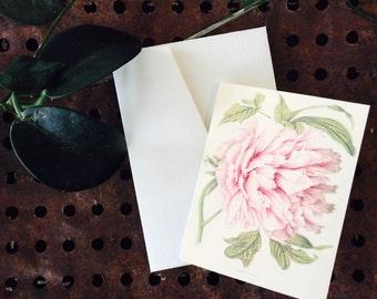 Vintage botanical/floral greeting card - PEONY