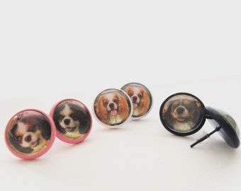 Picture earrings