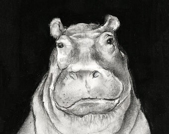 Lady Prunella (Hippopotamus)