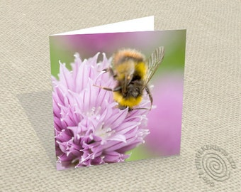 Bee on chives greetings card - Handcrafted from my original photograph