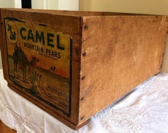 Great Old California Fruit Exchange Wooden Crate with Camel Brand Sticker !