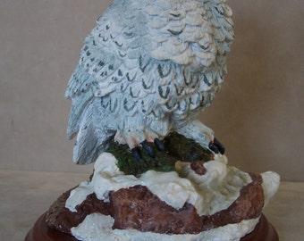 National Wildlife Federation Snowy Owl