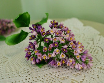 Lilac Branch   Flower Arrangements   Home Decoration   Flower Decoration    Flower Composition   Bouquet