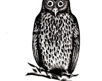 Owl illustration / art print / A5 size
