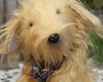 Toy Dog stuffed Teddy Honey