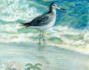 Sand Piper on the Beach with waves.