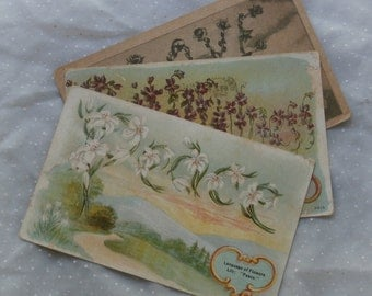 3 Antique Language of Flowers Post Cards, Lily, Violet, Rose Early 1900s