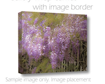 Wisteria Photograph-Romantic Wall Decor-Floral-Fine Art Photography on Canvas-Lavender Wall Art-Purple & Green Decor-Dreamy Wall Art
