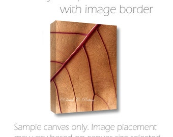 Nature Photography-Autumn Wall Art-Leaf Photography-Abstract Canvas Art-Red & Tan Wall Art-Fine Art Photography-Wall Canvas-Photo Canvas Art