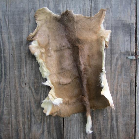 Large Tanned Whitetail Deer Hide Cabin Lodge Rug Pelt Skin Or