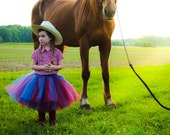 Cowgirl tutu- SEWN tutu - tutu, red and blue tutu, Country Blue Tutu, Blue, Red, country blue Tutu, Cowgirl Tutu, cowgirl costume
