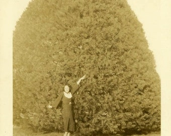 "Vintage Photo ""Woodland Fuzz Ball"" Tree Snapshot Photo Old Antique Photo Black & White Photograph Found Photo Paper Ephemera Vernacular - 61"