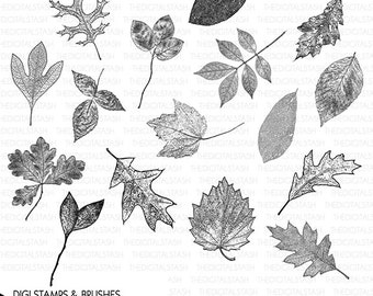 Digital Leaf Stamp and Brush Clip Art Collection - 16 Leaves - INSTANT DOWNLOAD - Cards, Scrapbooking, Invites, Journaling, Collage, Crafts