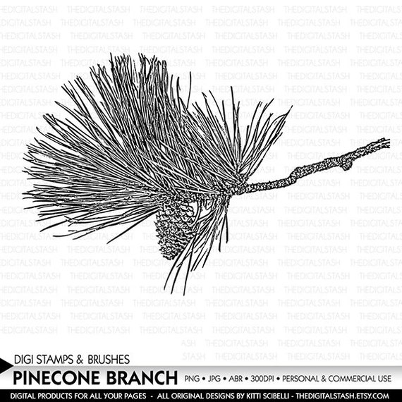 Pinecone Branch - Digital Stamp and Brush - INSTANT DOWNLOAD - for Cards, Scrapbooking, Invites, Journaling, Collage, Crafts and More