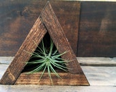 Triangle Air Plant Home  // Handmade // Wood Air Plant Planter // Air Plant Holder // Terrarium + Mini Air Plant // Rustic // Geometric