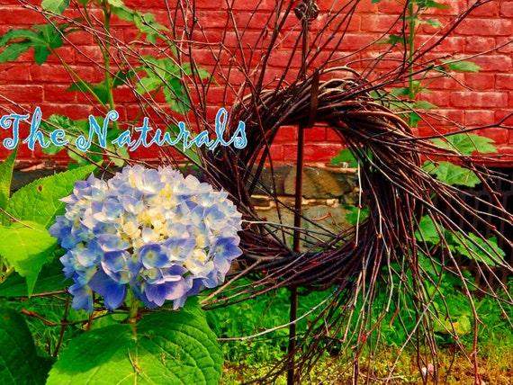 "Set of 6 - 8"" diameter Wild Primitive Birch Twig Wreaths"