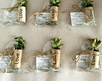 50 personalized succulent or air plant cork magnet favors with heart shaped boxes burnt names - magnets green wedding- rustic wedding