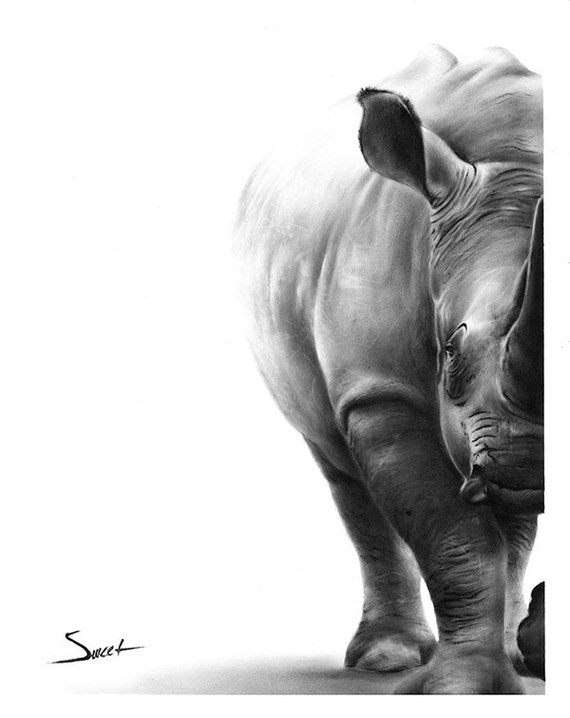 Rhino art print rhino print rhino wall art black rhino for Best black and white prints