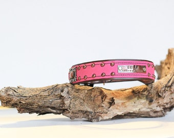 Personalized Leather Dog Collar // Pink White Blue Purple Orange