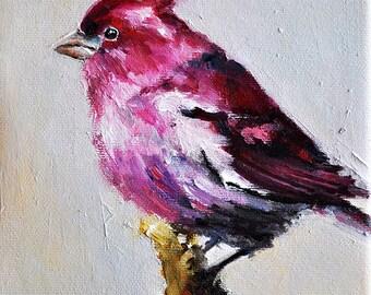Original Bird Oil Painting, Impressionist Purple Finch, American State Bird 6x6 Inch