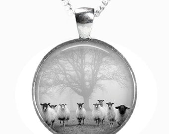 SHEEP - Glass Photo Pendant on Chain - Silver Plated (Art Print Picture AB8)