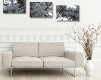 Nature wall decor set of 3 photographs home decor dining room fir tree photo set of three grey modern art decoration sea foam green wall art