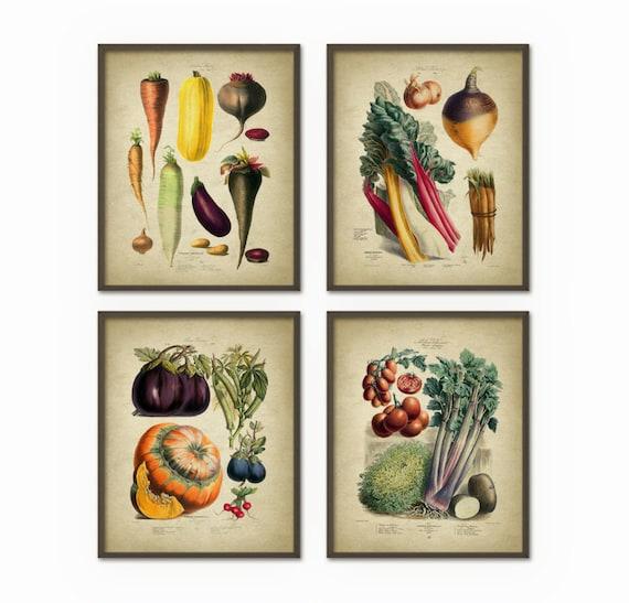 Kitchen Wall Decor Vegetables : Vegetables kitchen wall art print set of antique botanical