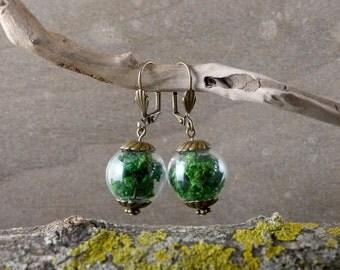 Real moss earrings, Nature earrings, Green earrings, Glass Bubble Jewelry, Green dangle earrings, Terrarium ecofriendly jewelry (WJ 002)