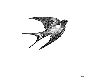 Black and white Vintage swallow swallow tattoo, bird tattoo,  Body Art, Wickedly Lovely Skin Art, includes 3 tattoos