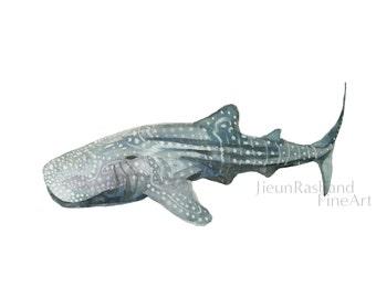 Whale Shark- Watercolor shark print of original painting, Shark art print, ocean theme wall art, nursery decor, kids room art