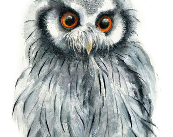 Owl Watercolor Painting - Giclee Print - Home Wall Decor - Bird  Watercolor Illustration.