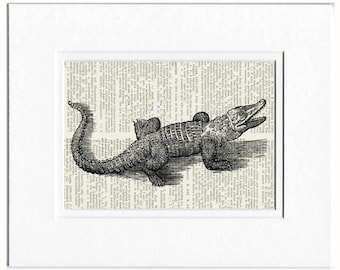 alligator dictionary page print