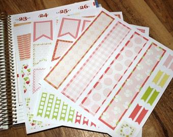 Strawberry theme Set- 96 Planner stickers!