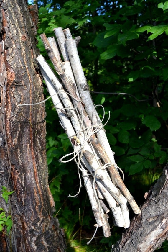 Birch Wood Logs ~ White birch tree sticks wood logs branches by interiordlites