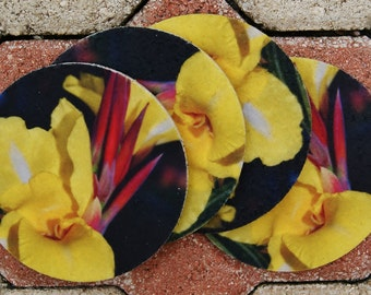 Yellow Lily Flower Coasters