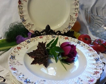"""Vintage English  Spode Copeland """"Wicker Dale"""" 10 1/2"""" Dinner Dishes (10)"""