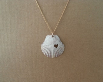 genuine shell on gold filled chain necklace