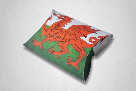 how to make a welsh dragon out of cardboard boxes